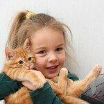 Кошка для ребенка