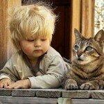 Кличка для кошки